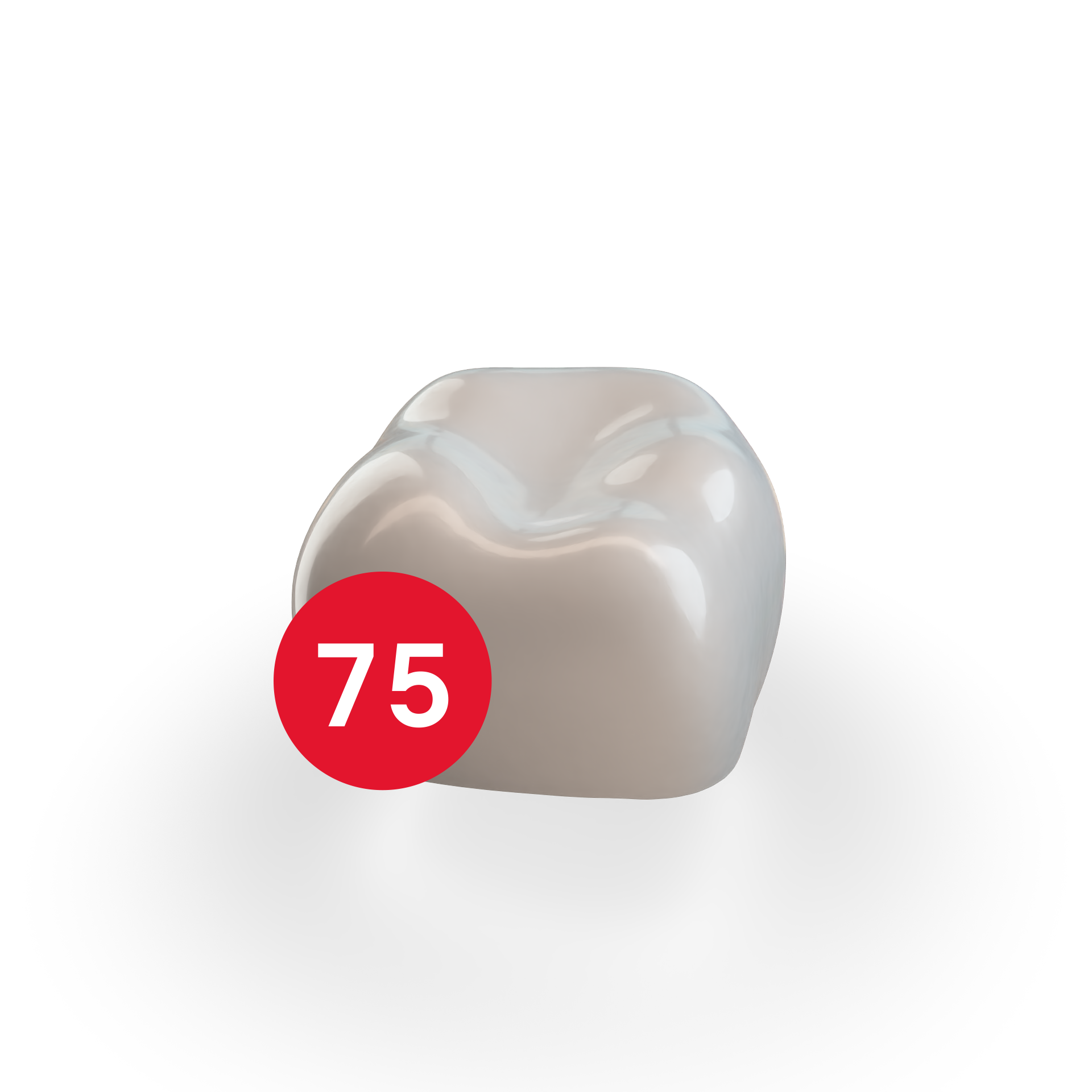 Second Molar LLE (75)