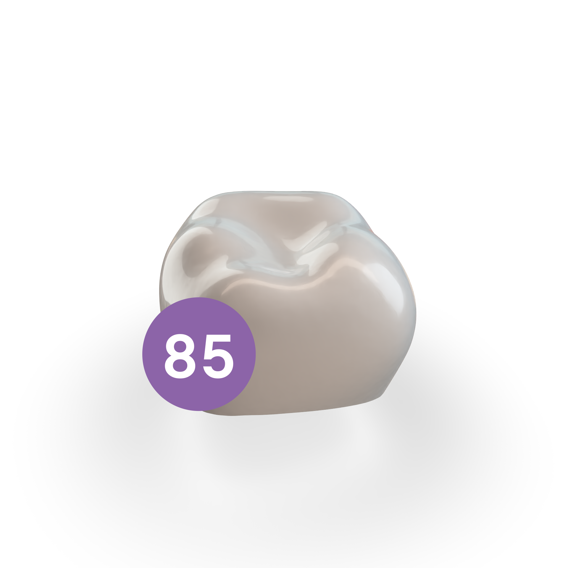Second Molar LRE (85)