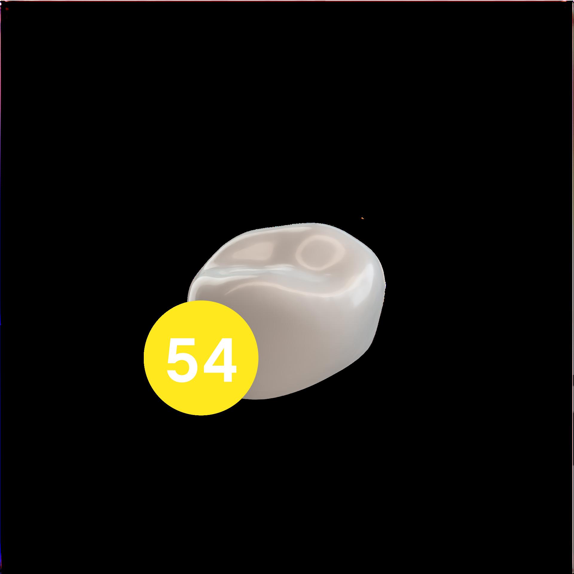 First Molar URD (54)