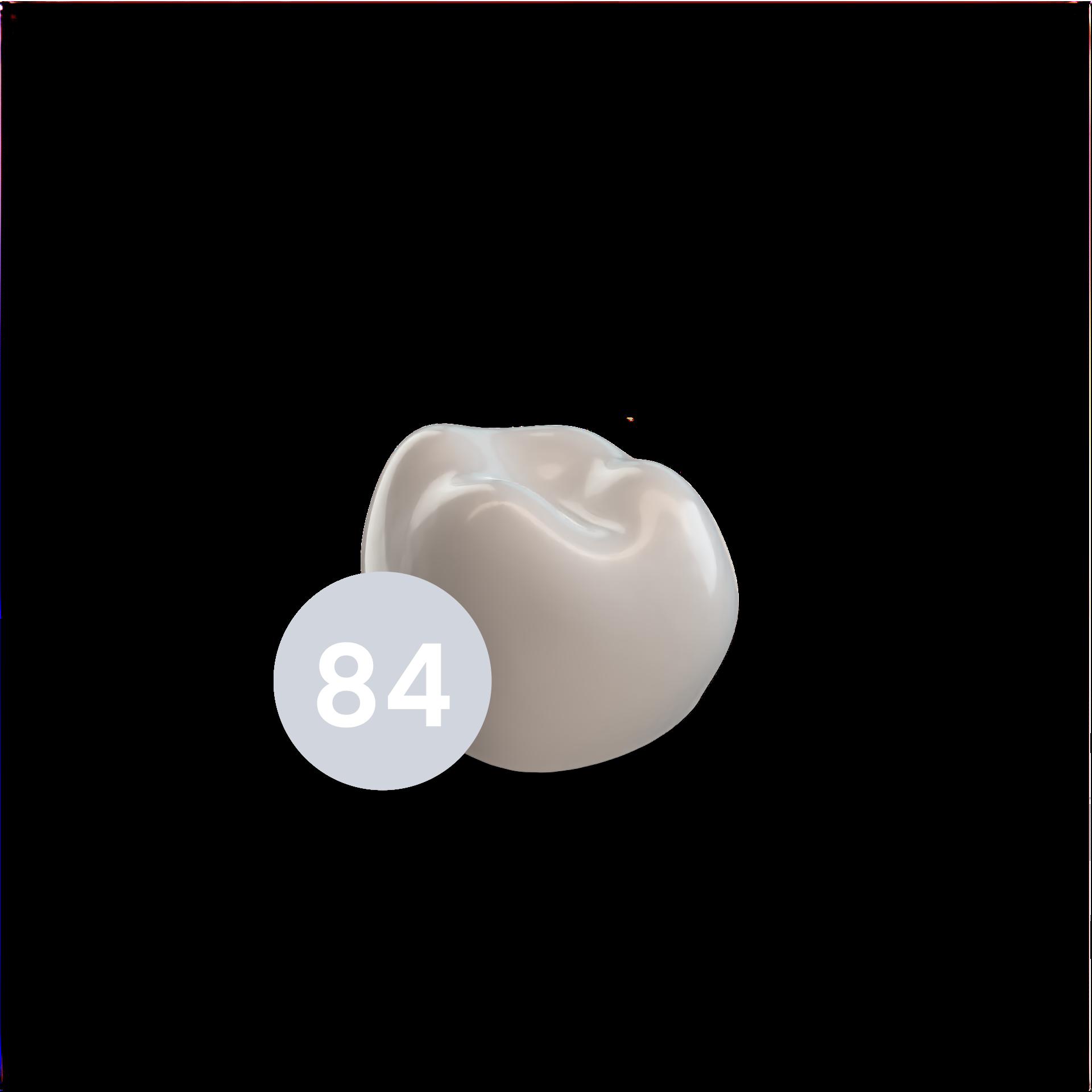 First Molar LRD (84)